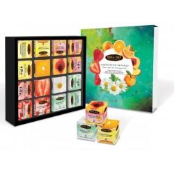 Regalo Infusenses Tea collection pyramids 16x1,8g